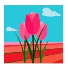 flowers -comp
